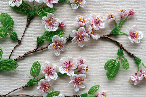 05_cherry_blossom_fragment_flickr_roundup