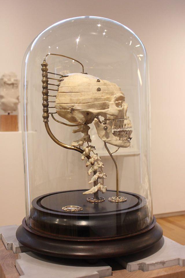 exploded-skull-2