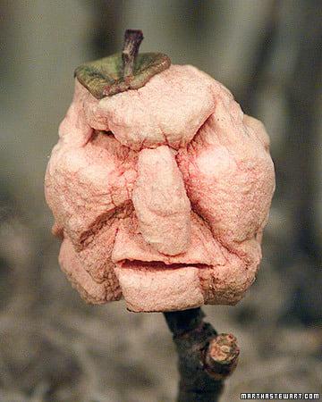 shrunken-apple-heads-1