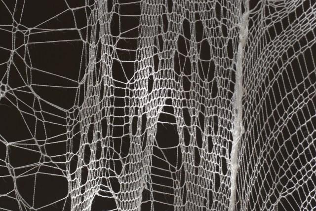 jenine-shereos-web-lace-4