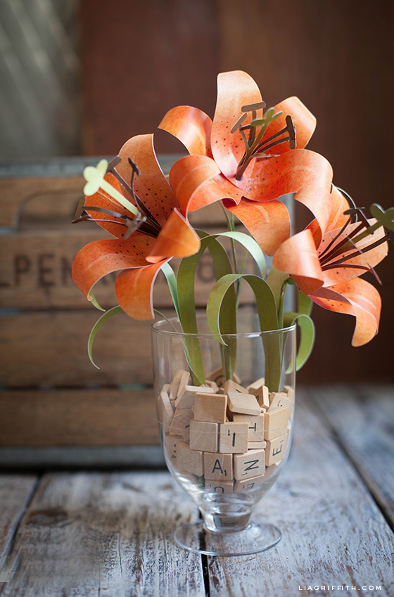 liagriffith_paper_tiger_lily_01