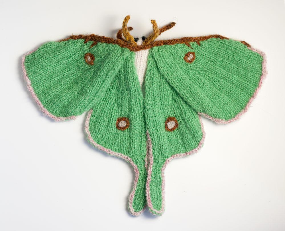 actias-luna-moth