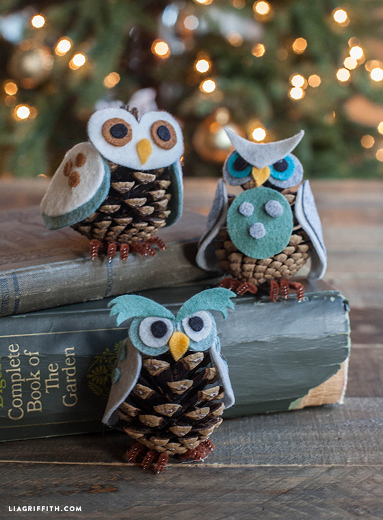 liagriffith_pinecone_owls_01