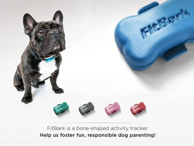 We have all heard of portable medical devices that allow patients to be monitored remotely, now are pets can be monitored with the Help of FitBark. The wearable device is attached to the pet's collar and features a 3-Axis sensor that monitors how active your pet is. FitBark connects to user's smartphones where they can use a corresponding app to access the data collected. Obviously, if owner's new pet puppy isn't active something could be wrong and the data feed would allow owners to take action.