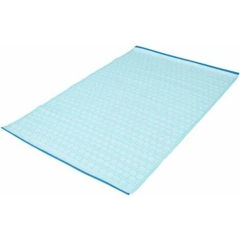 tapis d exterieur en pvc bleu