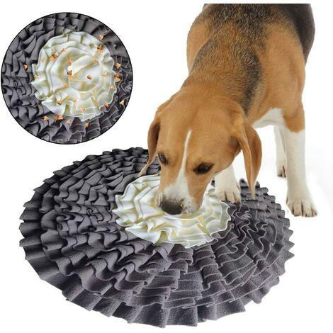 tapis chien a prix mini