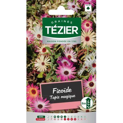 tapis de fleurs a prix mini