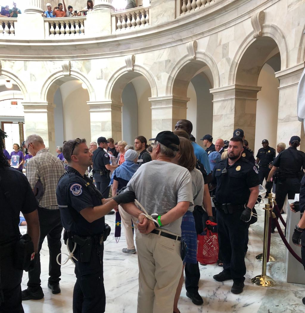 A demonstrator is arrested during a protest in the Russell Senate Office Building on Thursday, July 18, 2019. (Chris Marquette/CQ Roll Call)
