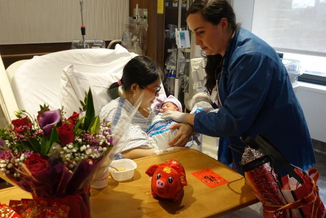 豬寶寶吳子穎 下城醫院搶頭彩 比預產期早三周報到 - 世界新聞網