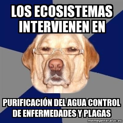 Meme Perro Racista los ecosistemas intervienen en