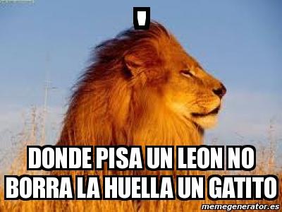 Meme Personalizado   DONDE PISA UN LEON NO BORRA LA