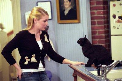 Resultado de imagem para Sabrina, a Aprendiz de Feiticeira