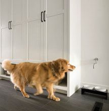Dog-friendly Design Trends - Midwest Home