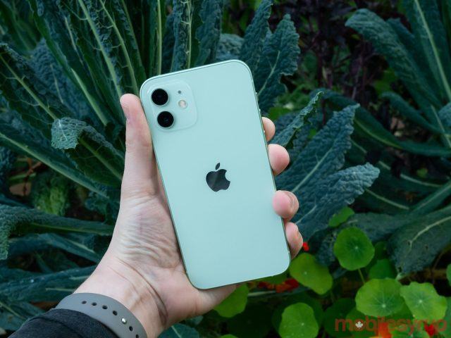 iPhone 12 back