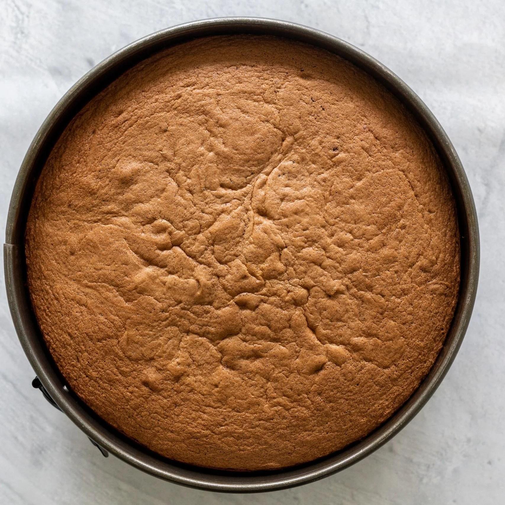 Chocolate sponge cake in a pan