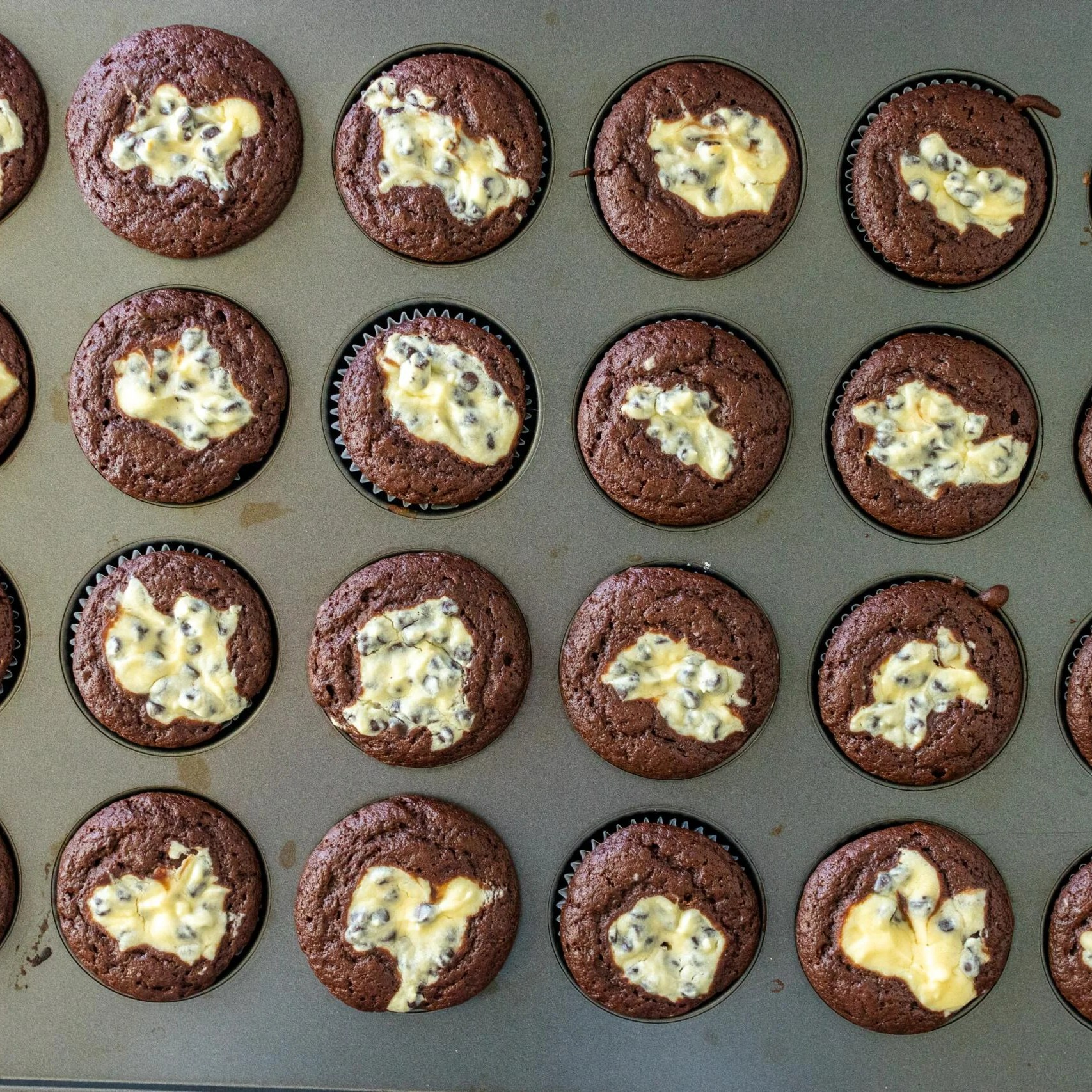 baked chocolate cupcakes in a baking pan