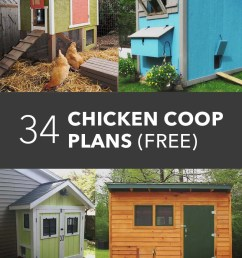 if you stumbled upon this article there s a high chance that you re new to raising chickens and looking to build a chicken coop by yourself  [ 800 x 1200 Pixel ]