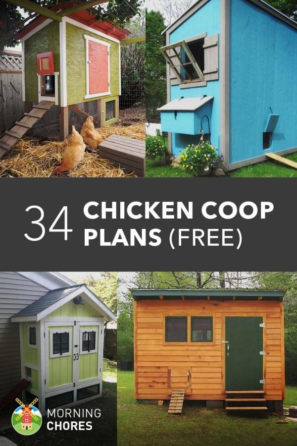 DIY Chicken Co-op Plans