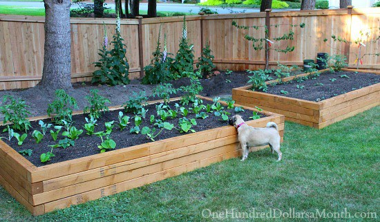 Raised Bed Garden Materials
