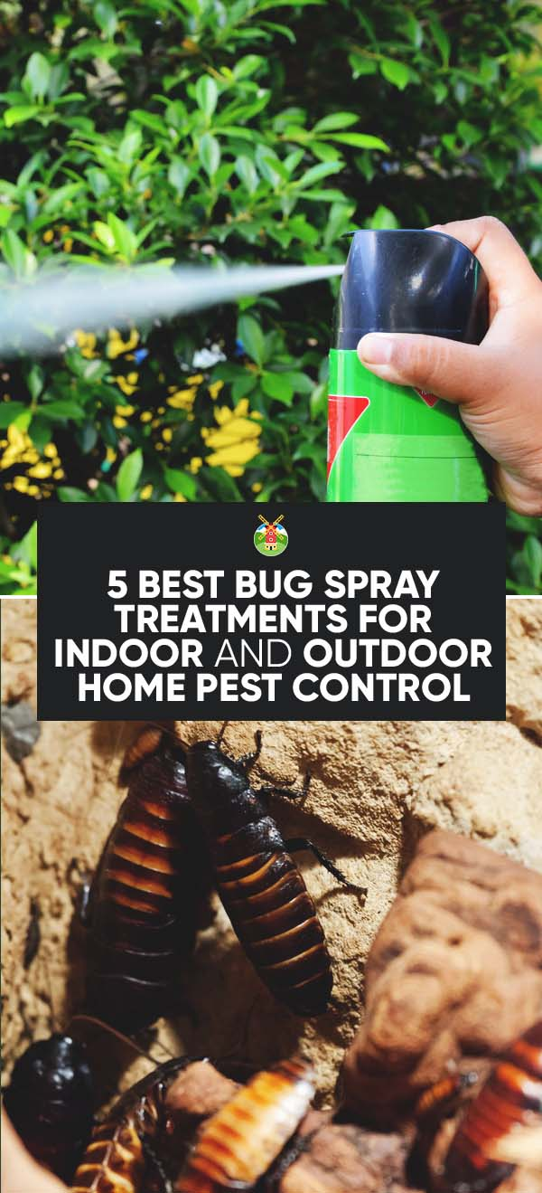 5 best bug spray treatments for indoor