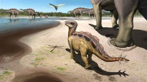 A fingerprint of a stegosaurus baby discovered in China