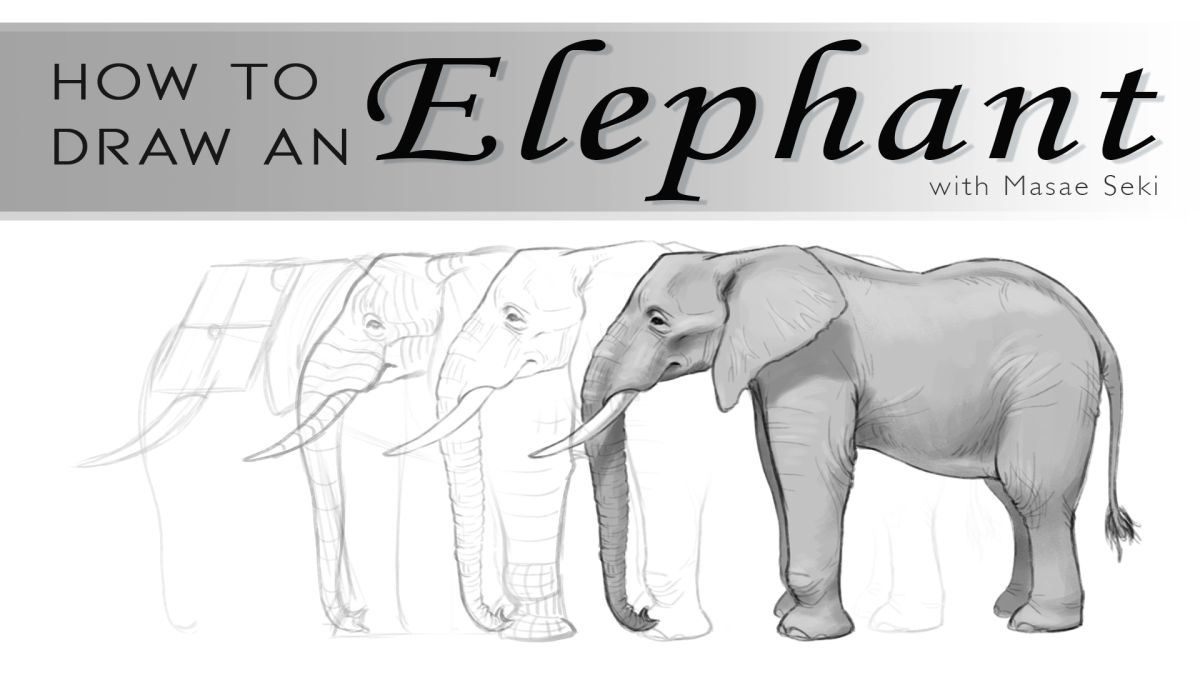 How To Draw An Elephant Creative Bloq