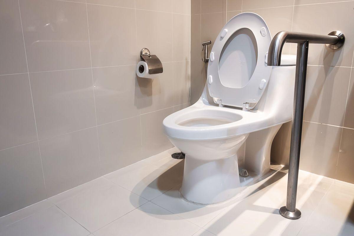 Bathroom flushes might unfold Legionnaires' illness