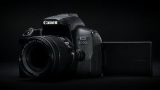 Canon Rebel T8i / 850D