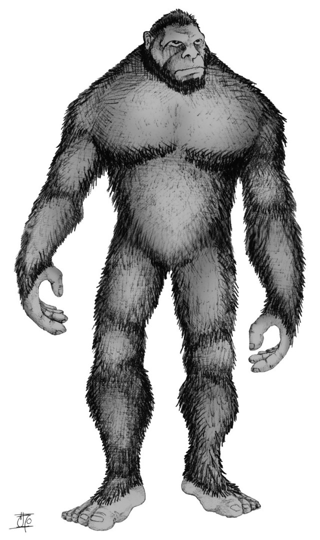 Why Do So Many Cultures Have a Version of Bigfoot?  Live Science