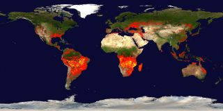 NASA's Terra satellite, with the Moderate Resolution Imaging Spectroradiometer (MODIS), captured this image of fires around the world back in 2010.
