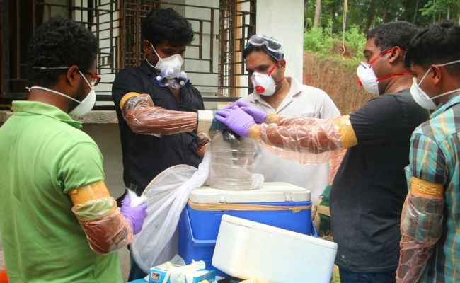 Where Did The Deadly Nipah Virus Come From And What