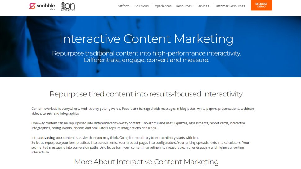 Ion Interactive - Taking developers out of web development