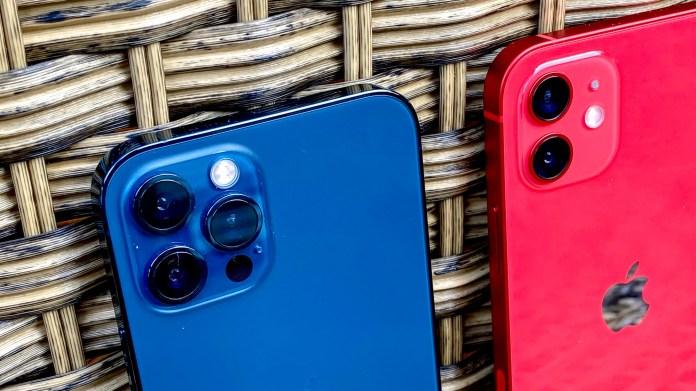 iPhone 12 Pro vs iPhone 12 cameras