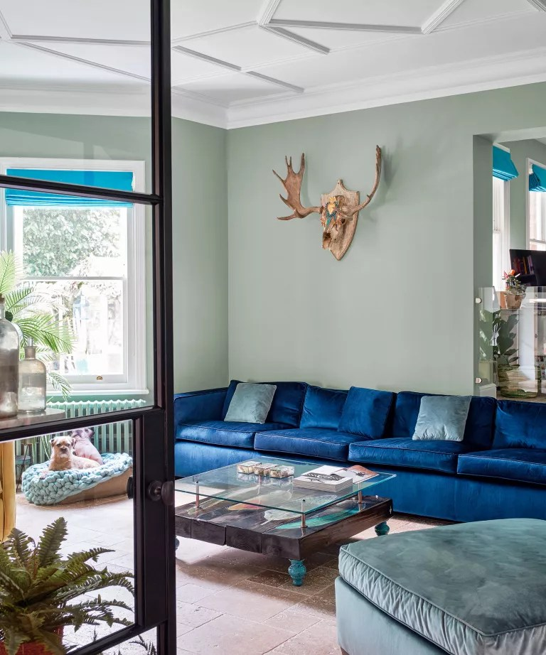 Modern green living room with blue velvet sofa