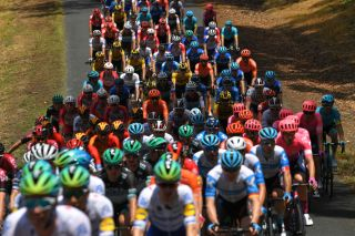 The Tour Down Under peloton