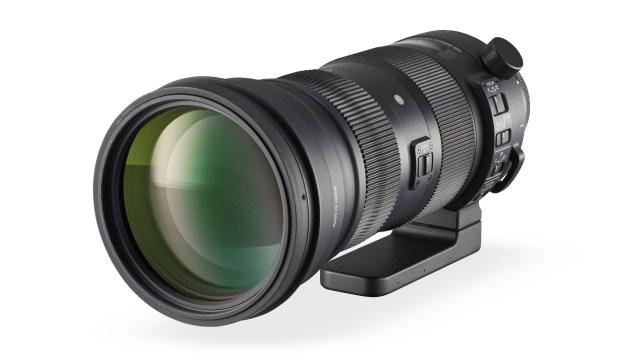 Sigma 150-600mm Contemporary
