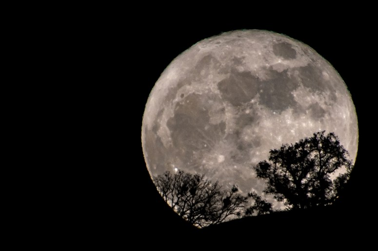 Image result for full moon
