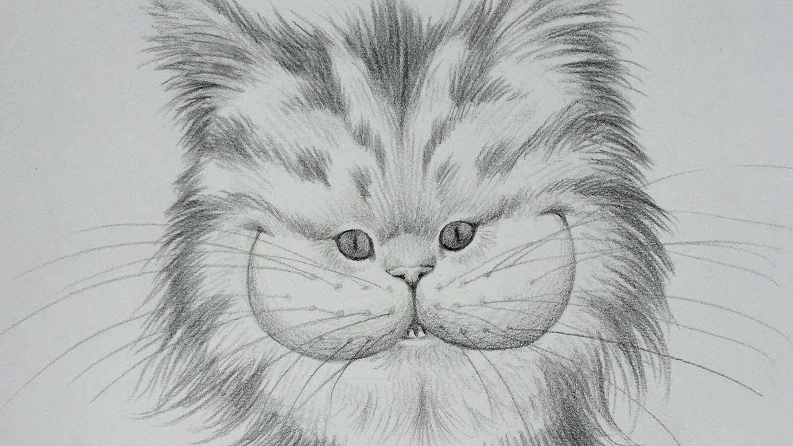 Pencil drawing of a smiling cat to check
