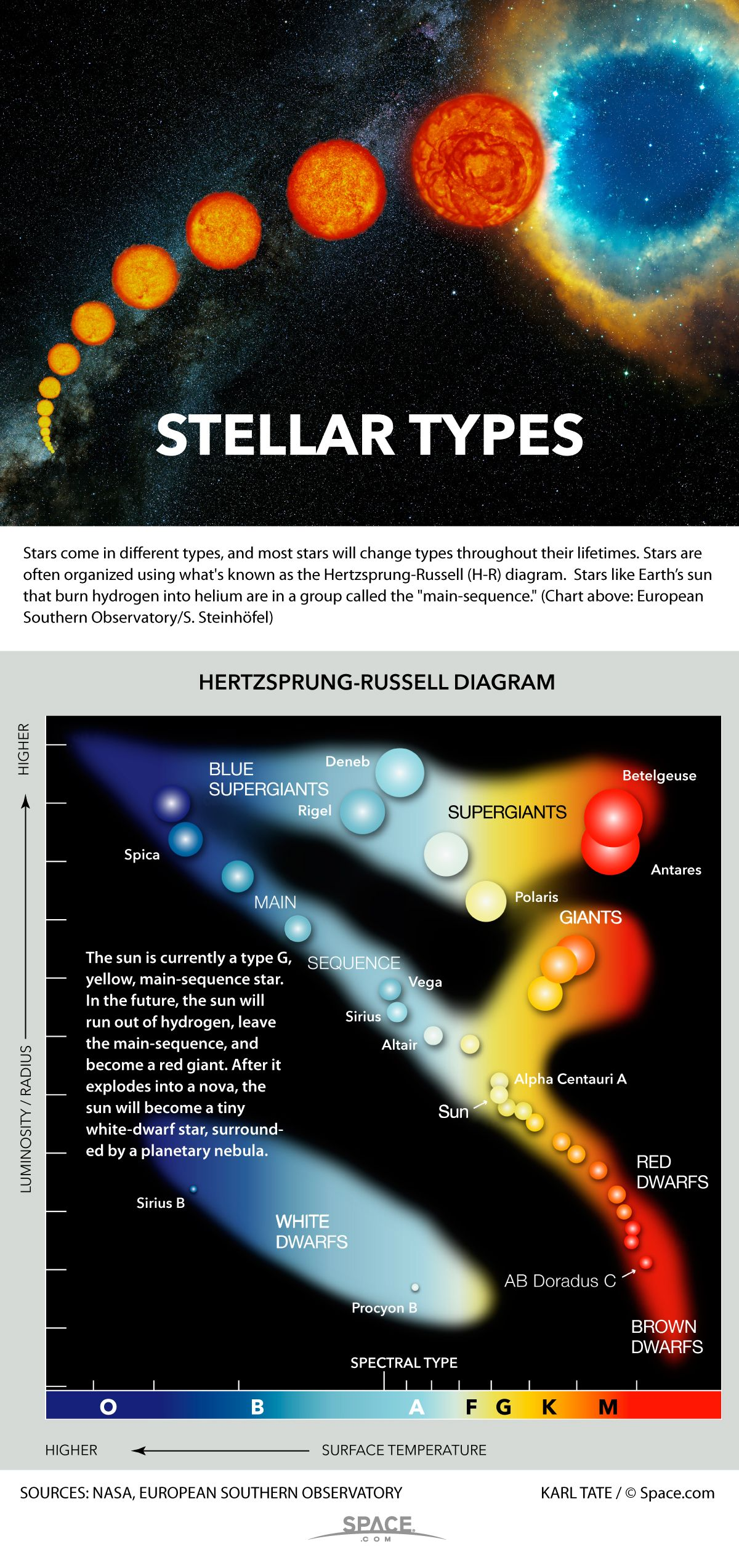 How To Tell Star Types Apart Infographic