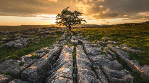 choosing lenses landscape