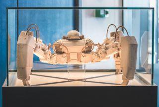 MekaMon statue at Reach Robotics office