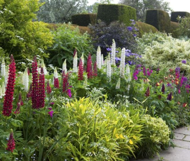 By Matt James July   Looking To Transform Your Garden