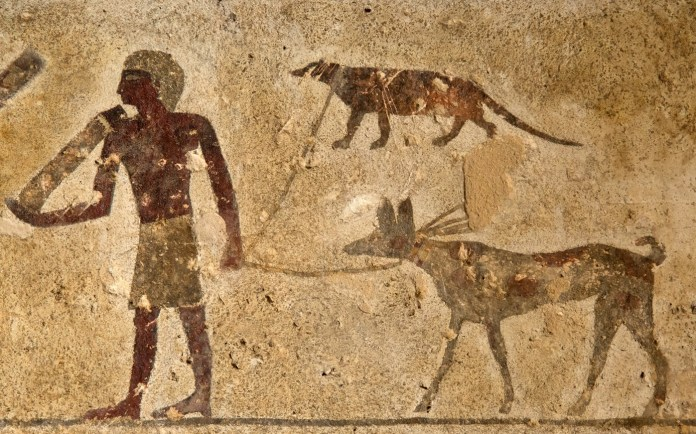 Tomb Drawing Shows Mongoose on a Leash, Puzzling Archaeologists ...