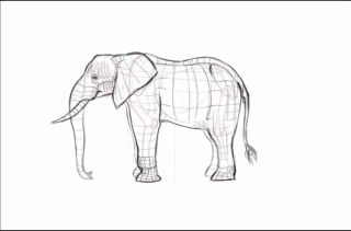 Rough sketch of an elephant