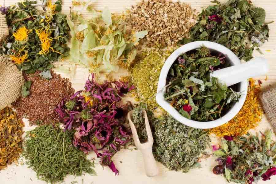 علاج انتفاخ الركبة بالأعشاب موسوعة
