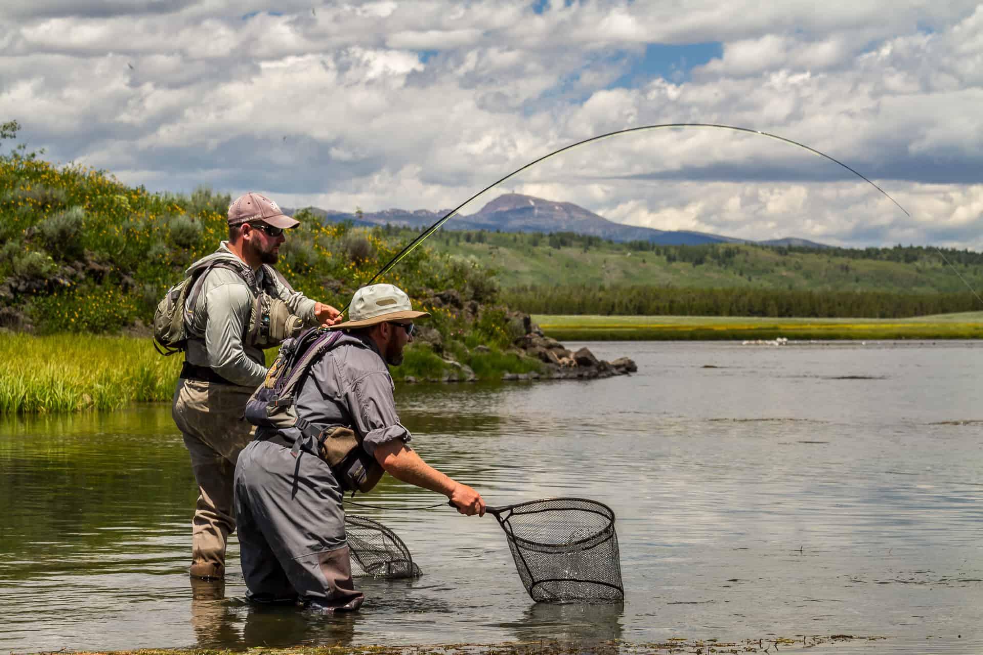 تفسير شبكة صيد في الحلم لابن سيرين موسوعة