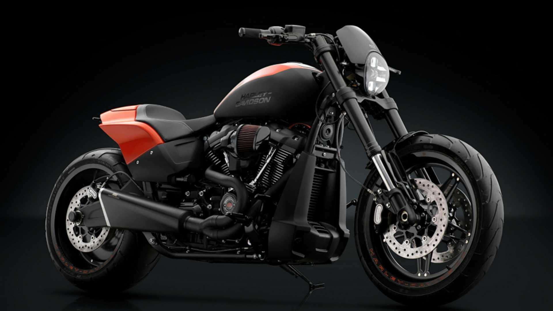 Rizoma Una Linea Per Harley Davidson Softail Omnimotoit