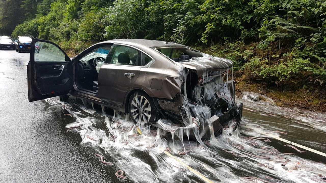 13 crazy highway spills
