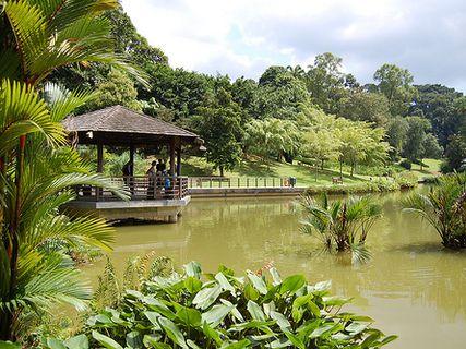 Botanische Garten Von Singapur In Singapur Singapur Mit