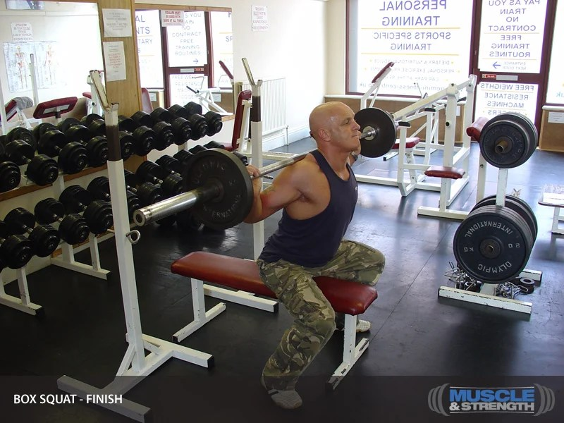 Box Squat Shown With Bench Video Exercise Guide Amp Tips
